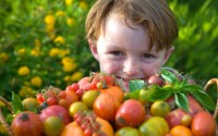 children-eat-vegetable1