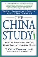 מחקר סין