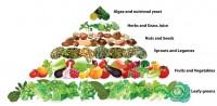 פירמידת מזון טבעונית
