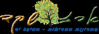 ארז שקד לוגו אתר