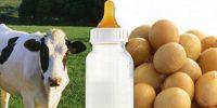 סויה לעומת חלב פרה